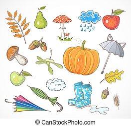automne, ensemble, vecteur, illustration., elements.