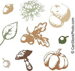 automne, ensemble, vecteur