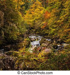 automne, ermitage