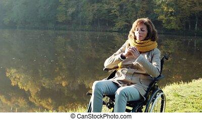 automne, fauteuil roulant, personne âgée femme, nature.
