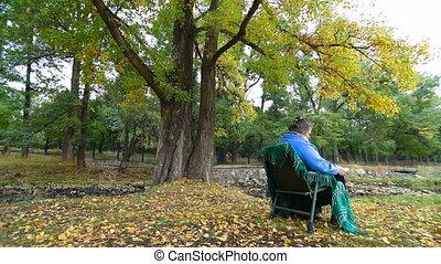 automne, femme aînée, livre, lecture