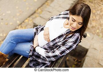 automne, femme, parc, jeune, pregnant