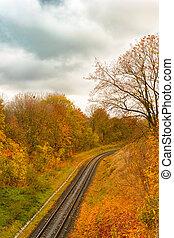 automne, ferroviaire, forêt