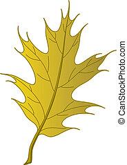 automne, feuille chêne, ibérique