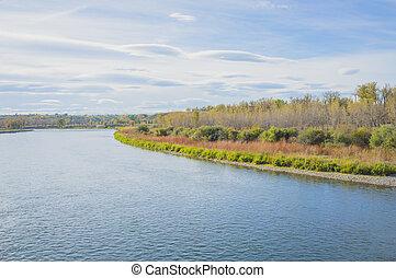 automne, fish, parc, ruisseau