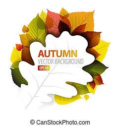 automne, floral, résumé, vecteur, fond