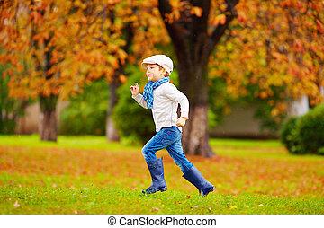automne, fonctionnement garçon, parc, heureux