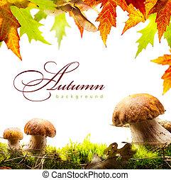 automne, fond, à, feuilles jaune, et, automne, champignon
