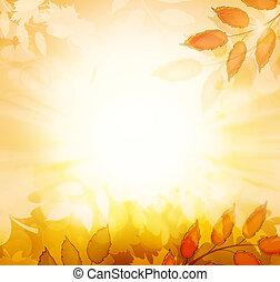 automne, fond, automne