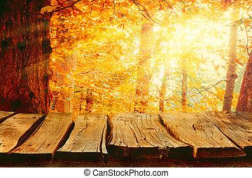 automne, fond, nature