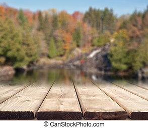automne, fond, scène