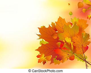 automne, foyer., peu profond, feuilles