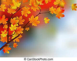 automne, foyer., peu profond, feuilles jaune