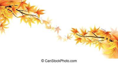 automne, frondes