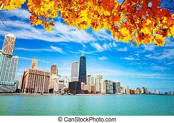 automne, front mer, feuilles, vue, chicago