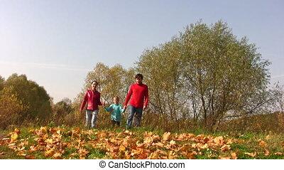 automne, garçon, feuilles marche, famille