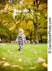 automne, garçon, peu, parc