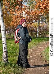 automne, garçon, sac à dos, ville parc