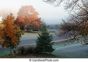 automne, glacial, matin