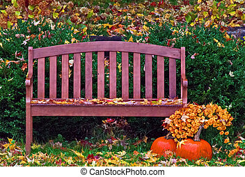 automne, jardin, pluie, banc