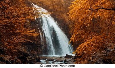 automne, jur-jur, chute eau, forêt