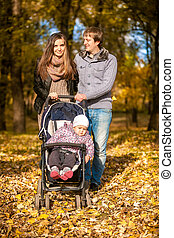 automne, landau, marche, parc, famille