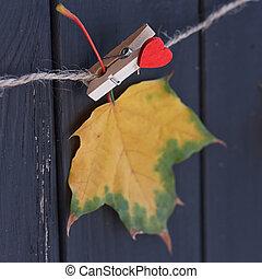 automne, ligne, feuille, érable, vêtements