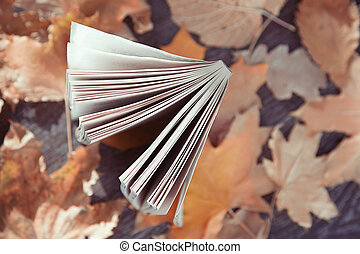 automne, livre