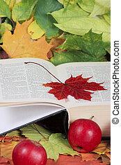 automne, livre, pommes