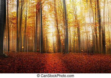 automne, magie, forêt, route