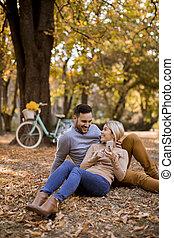 automne, mobile, terrestre, séance, utilisation, jeune, téléphone, parc, couple
