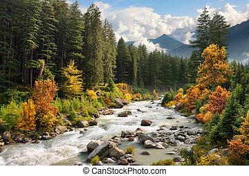 automne, montagne, coloré, paysage