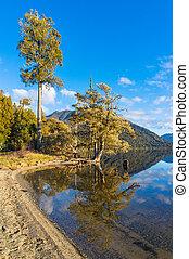 automne, montagne, reflété, arbres, lac