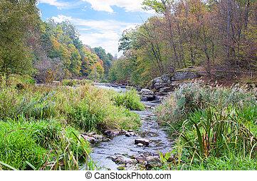 automne, montagne, rivière