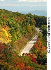 automne, montagne, tennessee, route, pendant