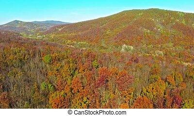automne, montagnes.