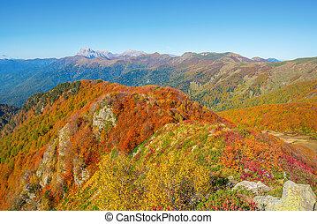 automne, montagnes., vue