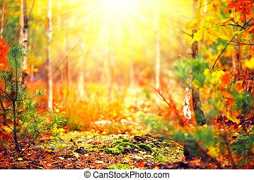 automne, nature, résumé, ensoleillé, brouillé, forest., fond