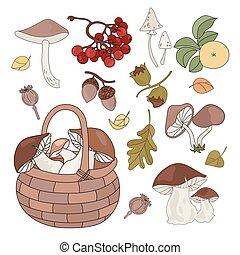 automne, nature, saison, ensemble, automne, illustration, marchandises, vecteur, forêt
