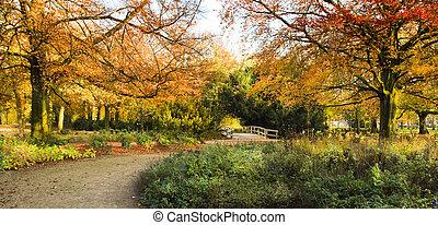 automne, panorama, entrée, parc