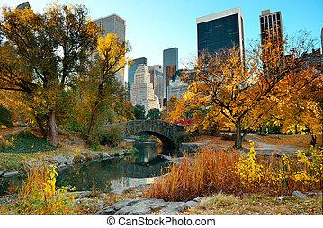 automne, parc central