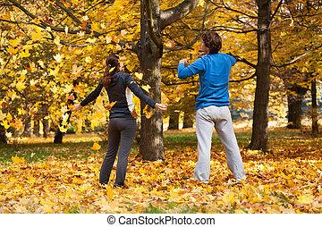 automne, parc, délassant