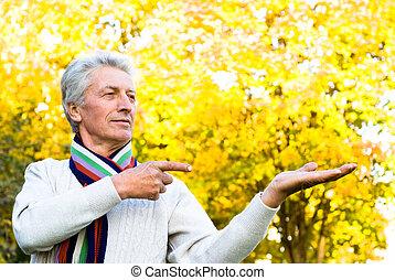 automne, parc, homme