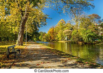 automne, parc, jour ensoleillé, banc