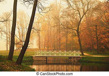 automne, parc, lac