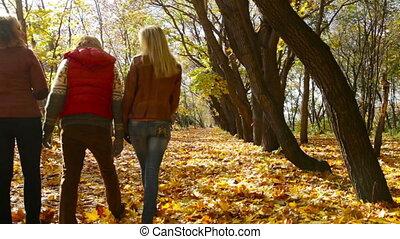 automne, parc, loisir