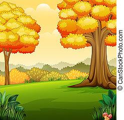 automne, parc, paysage, arbres