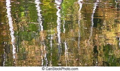 automne, parc, reflet