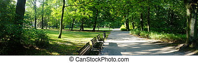 automne, parc, temps