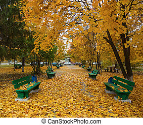 automne, parc vert, bancs